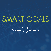 SMART GOALS - 6
